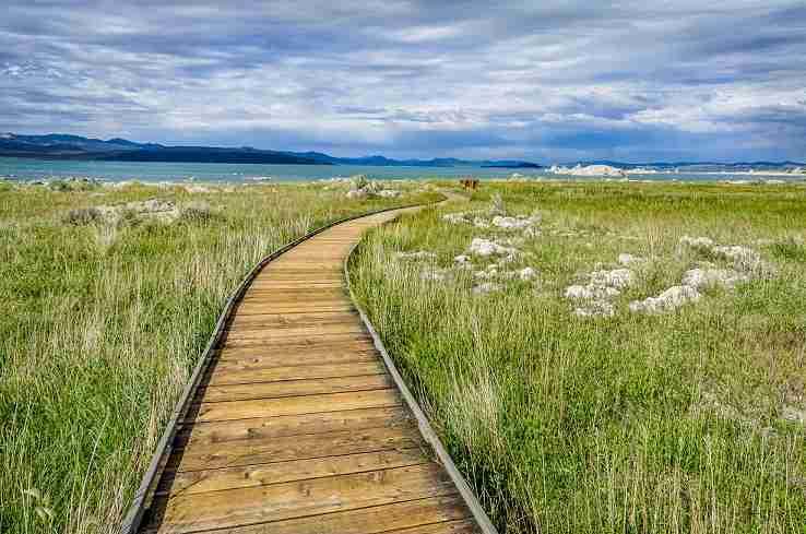 The-Long-Path-to-Mono-Lake_7